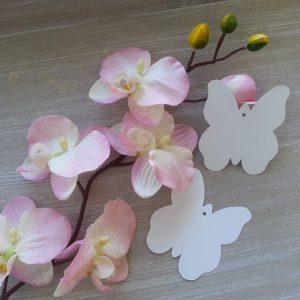 tarjeta_de_los_deseos_mariposa