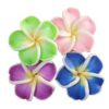 flor pasta arriba