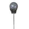 corona perla ref 1556 grande